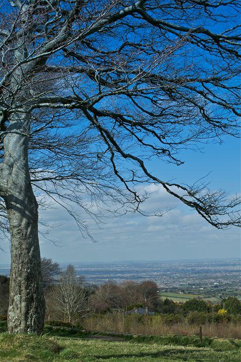 Dublin City View - debchePhotography