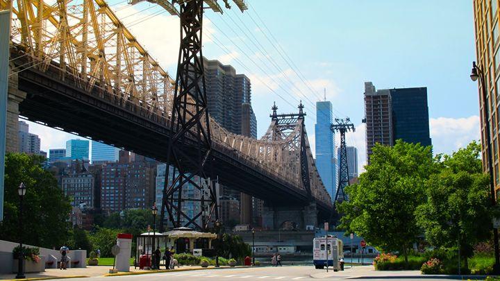 From below 59th Street Bridge - debchePhotography