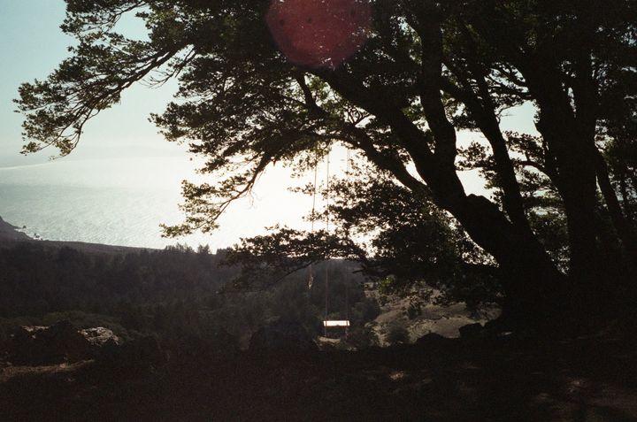Mt. Tam - Jade