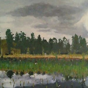 The Prairie in the Okefenokee Swamp - Terry Forrest Fine Art