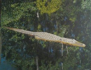 Alligator in the Black Waters of the - Terry Forrest Fine Art