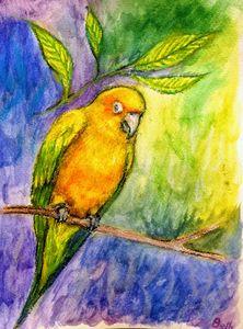 Parrot - B Marie Ashton