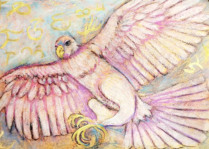 Pink Falcon - Prints from Creation Creatures