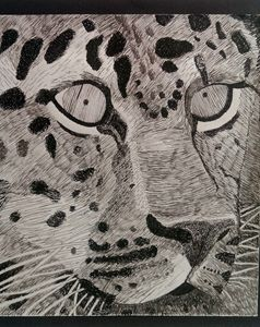 Stare - Art Inspirations