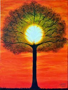 Tree at sunset