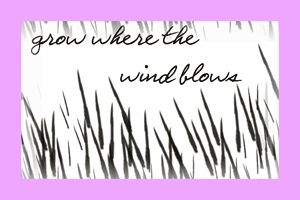 Grow Where the Wind Blows