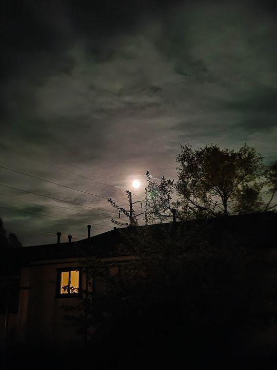 July Moon - Kattz Wonderland Emporium