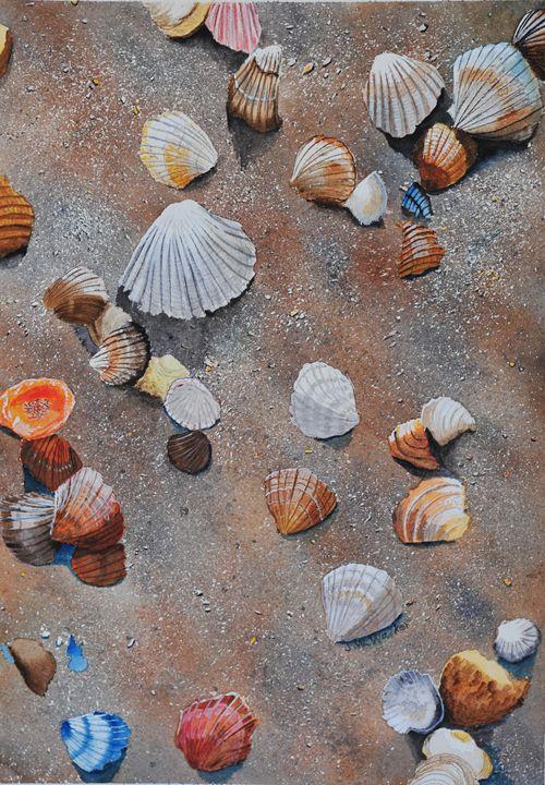 Shells - John W. Walker Art