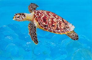 Ea (Hawksbill Sea Turtle) - John W. Walker Art