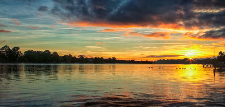 Wildlife on Lake Sunset - Thomas Vasas Photography & Art