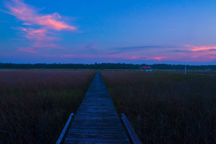 The South Carolina Sunset - Thomas Vasas Photography & Art