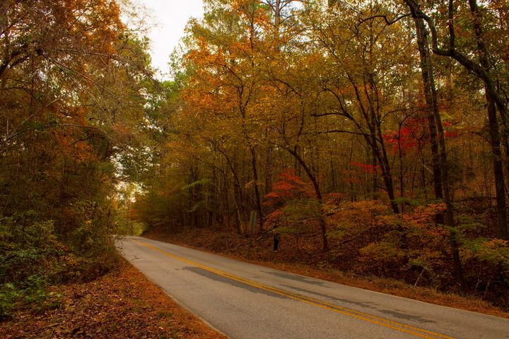 Fall on a County Road - Thomas Vasas Photography & Art