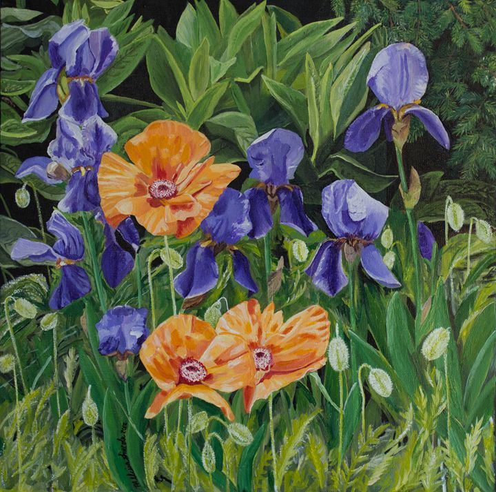 Iris and Poppies Hudson Gardens - MKDL Paintings and More