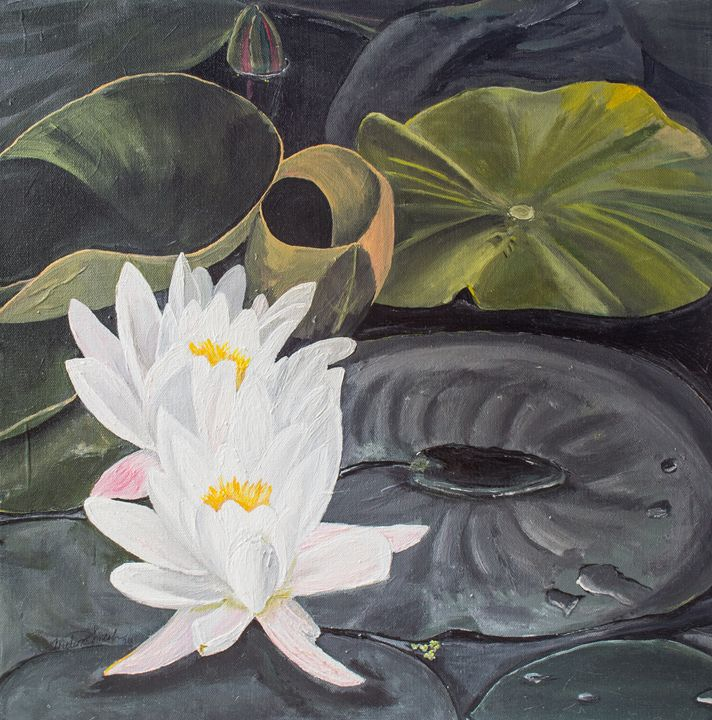 White Waterlillies-DBG - MKDL Paintings and More