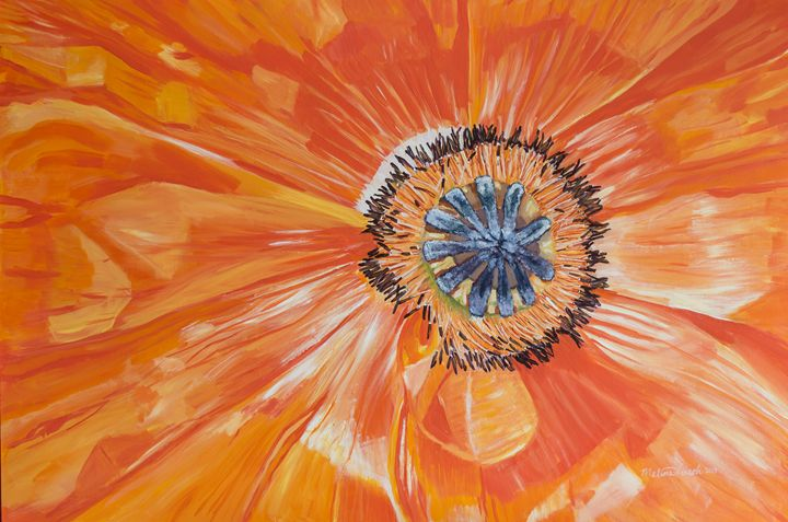 Orange Poppy - MKDL Paintings and More