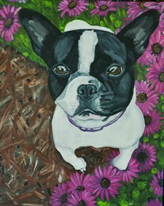 French Bulldog with Daisies
