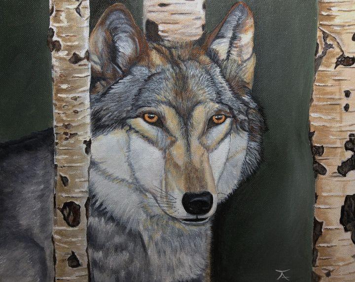 Shy Wolf - yukitkat art/ kathleen Y Parr