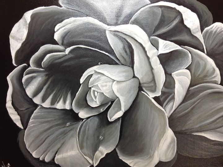 Gray beauty - yukitkat art/ kathleen Y Parr
