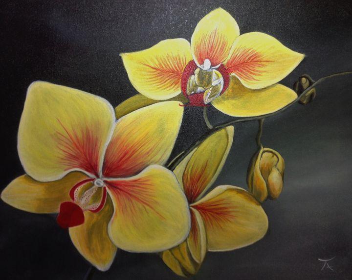 Orchids - yukitkat art/ kathleen Y Parr