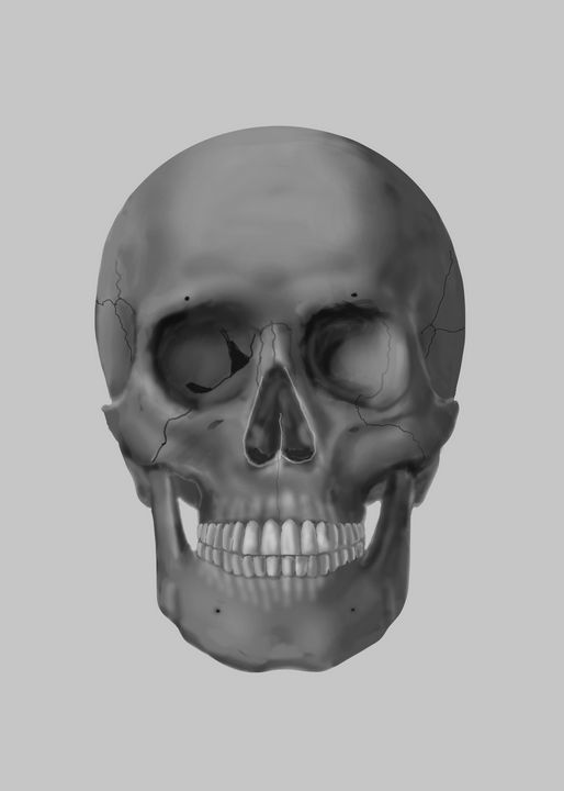 Skull - Svetlozar Petkov