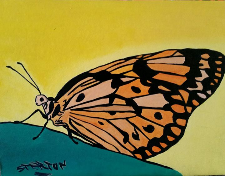 papillon - sterton