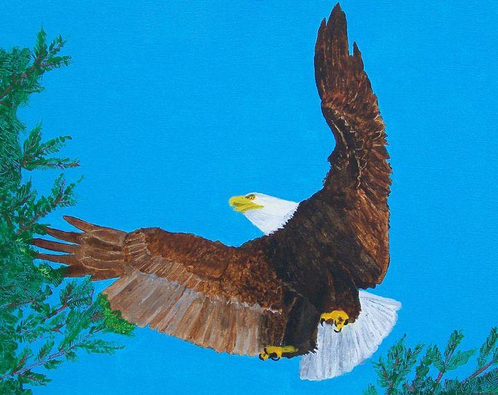 Bald Eagle - Photo Art by D J Chesterton