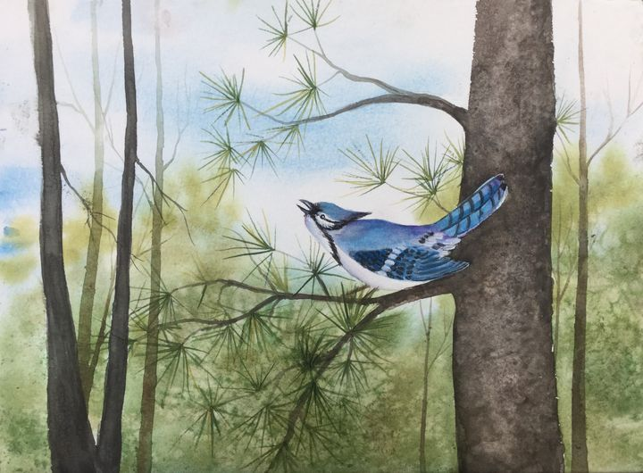 Bluejay In The Pines - Regena Jones Art In Bloom