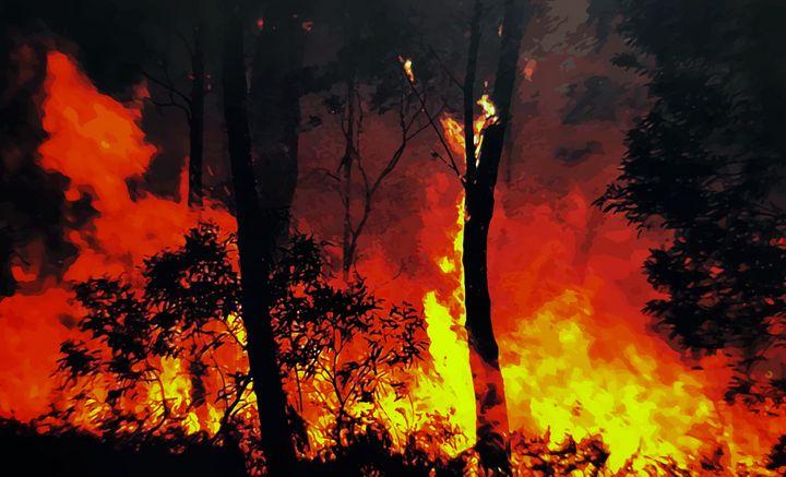 Rainforest Inferno - SoonyaNeverland