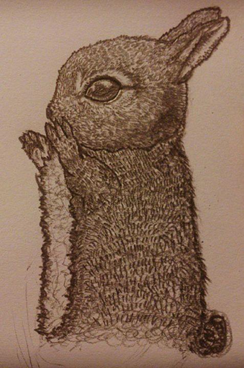 Bunny Theo - himal3