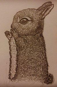 Bunny Theo