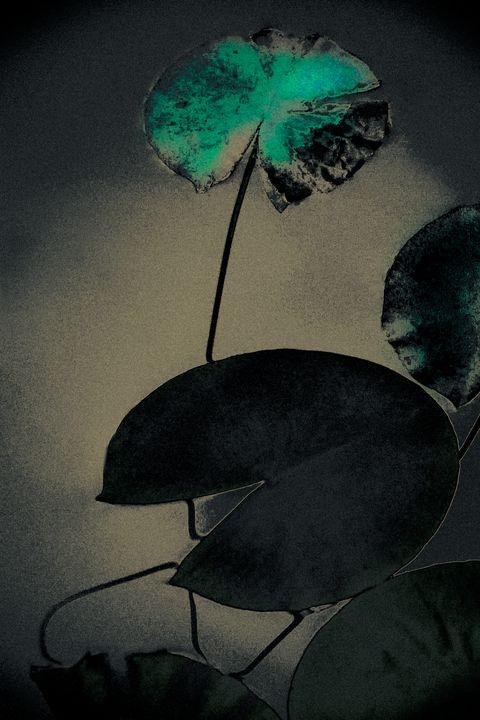 Emerald Spring - Alice Gur-Arie