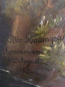 Peter Baumgras art