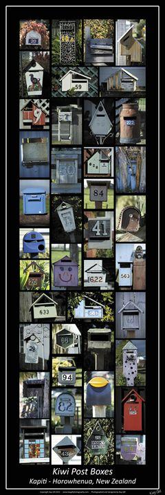 Kiwi Post Boxes - A Collection - Kay Gill