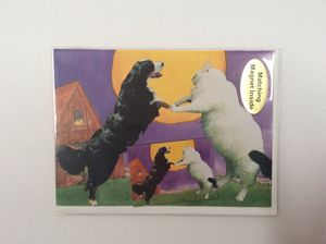 Dance of pets with matching magnet