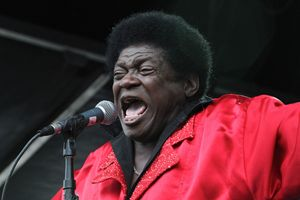 Singer Charles Bradley Color Photo - Front Row Photographs