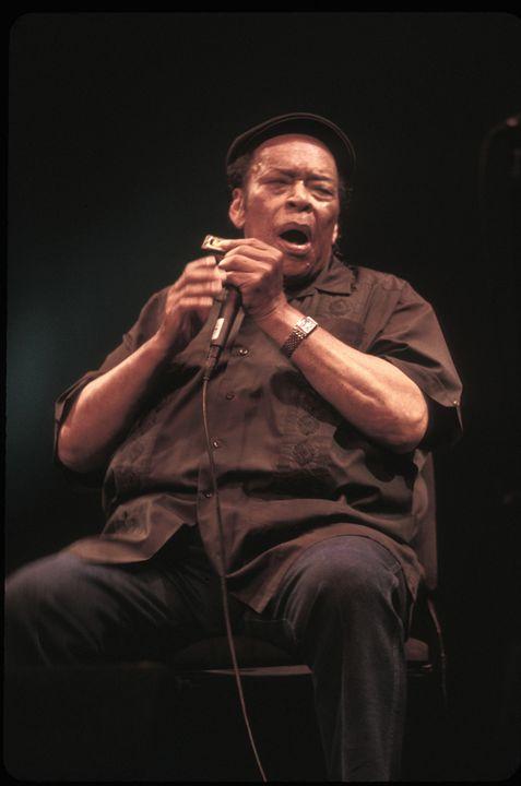 Blues Legend James Cotton Photo - Front Row Photographs