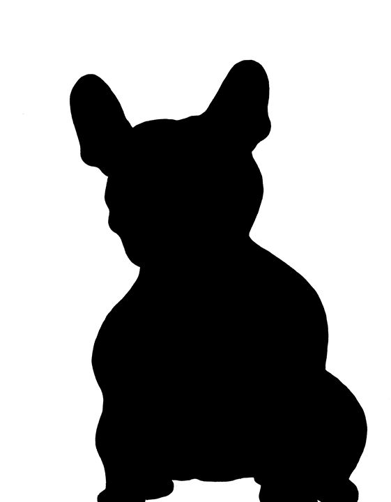 French bulldog - Above the noise 003
