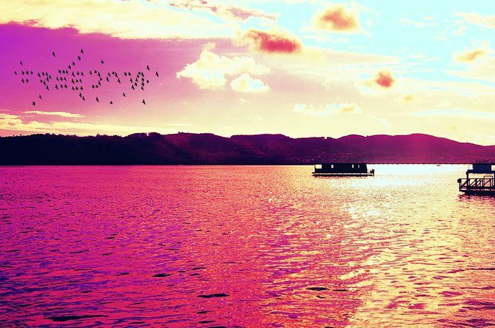 Pink sky - ME