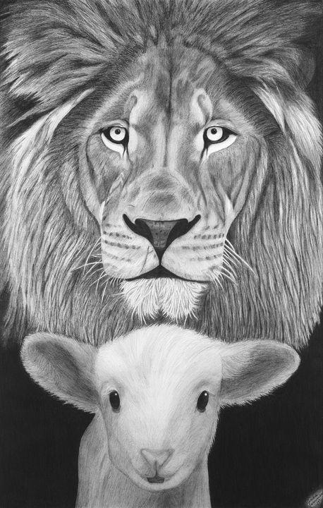 The Lion and the Lamb - Christine Winters