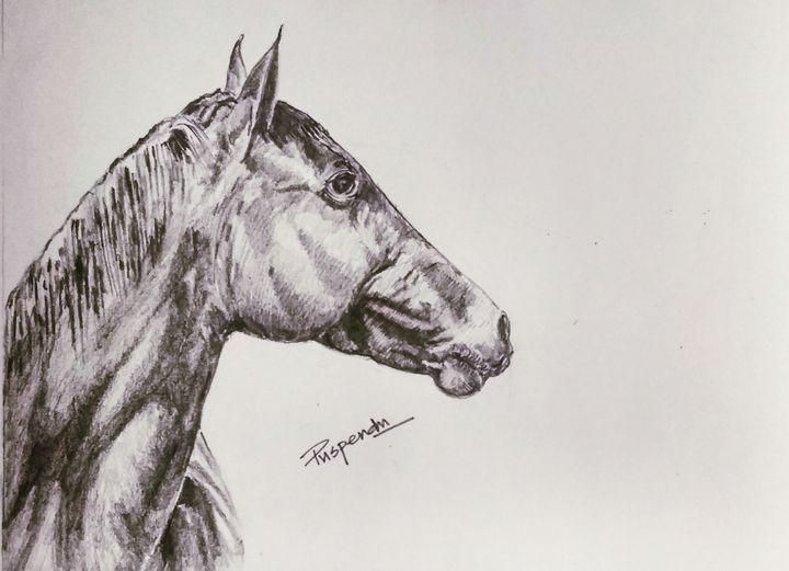 Horse Face-2 - Puspendu Roy Karmakar