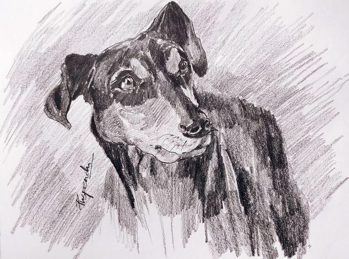 Dog face - Puspendu Roy Karmakar