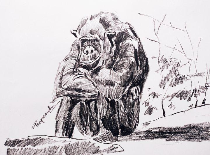 Ape sitting - Puspendu Roy Karmakar