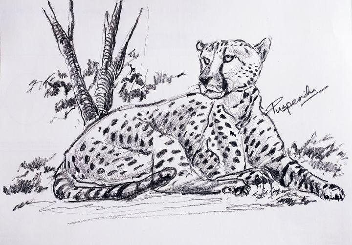 Cheetah sitting - Puspendu Roy Karmakar