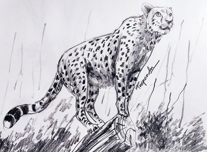 Leopard having a view - Puspendu Roy Karmakar