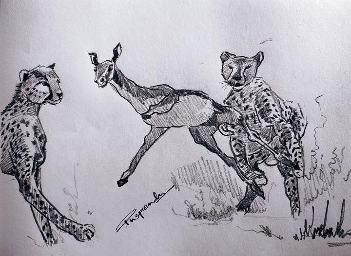 Cheetah on hunt - Puspendu Roy Karmakar