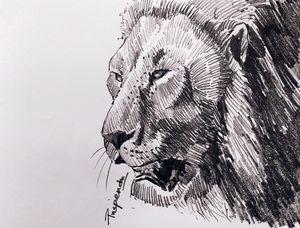 Lion Face-1