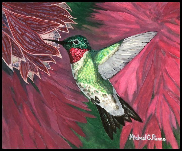 Ruby Throated Hummingbird W/ Border - Michael Panno