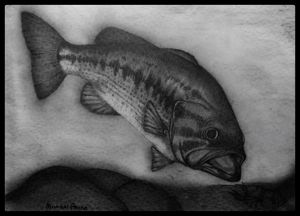 Largemouth Bass - Michael Panno