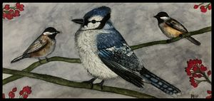 Blue Jay Portrait - Michael Panno