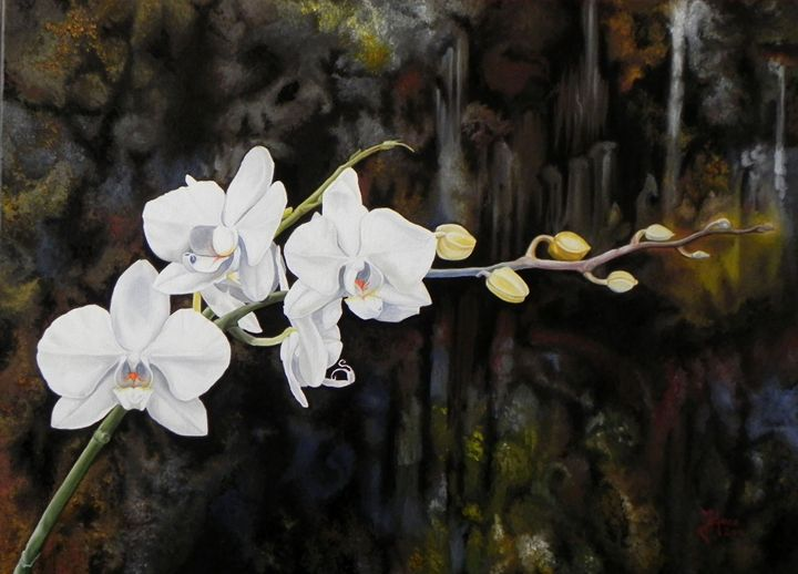 Orchid - Paintings